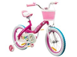 RoyalBaby CANDY COWY Rider 16 basket RB16-20